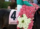 Zenyatta's saddle towel and a blanket of flowers.