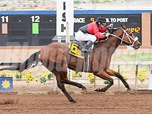Proceed wins the 2015 Sunland Park Handicap.
