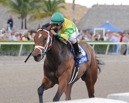 Onlyforyou wins the Grade II Forward Gal Stakes at Gulfstream Park on January 25, 2014.