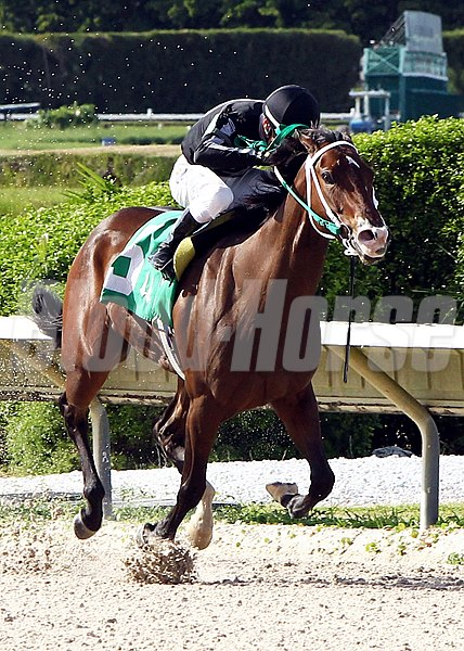 R Free Roll rides to victory in the Bold World Handicap at Calder Race Course in Miami Gardens, Florida.
