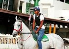 Clasico del Caribe: Local Filly Faces Boys