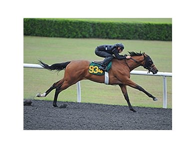 Hip 934, a filly by Bernardini named Dark Day, went a quarter-mile in :20 4/5.