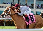 "Sandiva won the Suwannee River Stakes on Feb 7.<br><a target=""blank"" href=""http://photos.bloodhorse.com/AtTheRaces-1/At-the-Races-2015/i-BsS9hrs"">Order This Photo</a>"