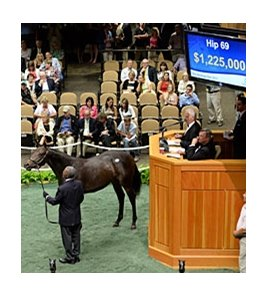 Hip 69 was the top seller at the Fasig-Tipton Saratoga Sale.