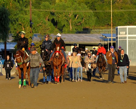 The Fugue (next to pony with red shadow roll) walks to the track with trainer John Gosden, second right. 