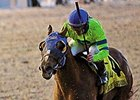 Derby Contender War Story Works at Churchill