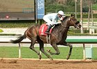 Prospect Park faces 9 in the La Jolla Handicap.