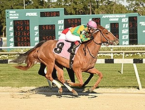 Include Betty wins the 2015 Suncoast Stakes.