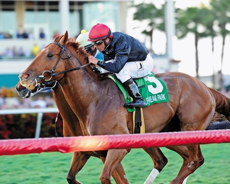 Reload charged up the rail and snatched victory from pacesetter Mr. Online in the $150,000 Grade III Canadian Turf Handicap at Gulfstream Park.