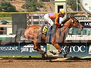 Beholder wins the 2015 Santa Lucia Stakes.