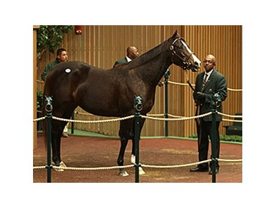 Broadway's Alibi, Hip 96, sold for $2,150,000 on Nov. 5.
