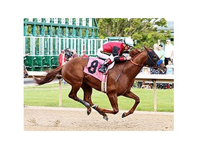 Wolf Man Rocket won the Northern Spur Stakes April 11.