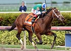 "Materiality comes home strong to take the Florida Derby.<br><a target=""blank"" href=""http://photos.bloodhorse.com/AtTheRaces-1/At-the-Races-2015/i-KwQ45Vt"">Order This Photo</a>"