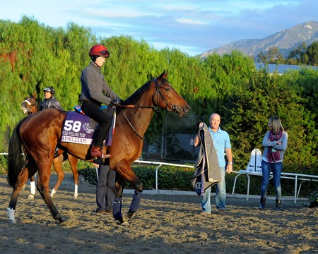 Caption:  Chriselliam