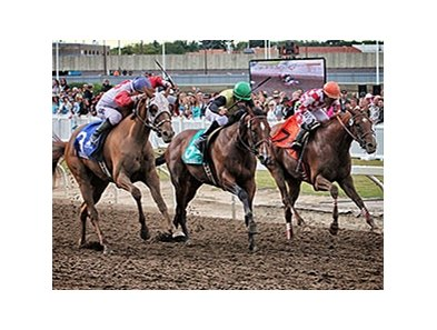 Racing at Northlands Park, the province's major racetrack, is located in Edmonton about three hours north of Calgary.
