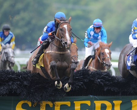 Mabou romps home to win the Grade I New York Turf Writers Cup Steeplechase Handicap at Saratoga Race Course.
