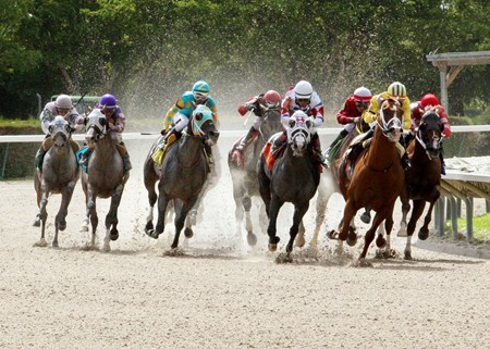Bahamian Squall battles for the lead in the Smile Sprint Handicap at Calder Race Course in Miami Gardens Florida.