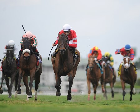 Showing her affinity for the Gulfstream Park turf, Naples Bay boldly charged between horses in the stretch and pulled clear to win the Grade III Marshua's River Stakes in her career finale.