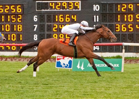 General Election and jockey Joseph Rocco Jr. winning the 2013 Arlington Classic at Arlington Park.