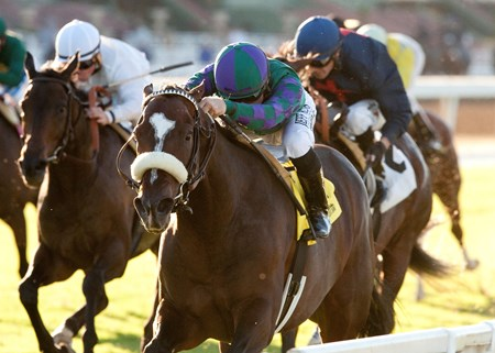 Favored Big Bane Theory threaded his way along the inside for Joe Talamo and put away the field in the stretch to register his first stakes win in the $200,000 Grade II City of Hope Mile Stakes on the turf at Santa Anita Park.