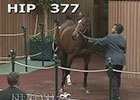 Kee Nov 2014: Hip 377 in the Ring
