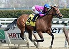 "La Verdad will make her 6-year-old debut in the Interborough.<br><a target=""blank"" href=""http://photos.bloodhorse.com/AtTheRaces-1/At-the-Races-2015/i-c4p8G7F"">Order This Photo</a>"