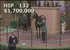 Keeneland Nov. Sale 2014 - Hip 132 - Stanwyck