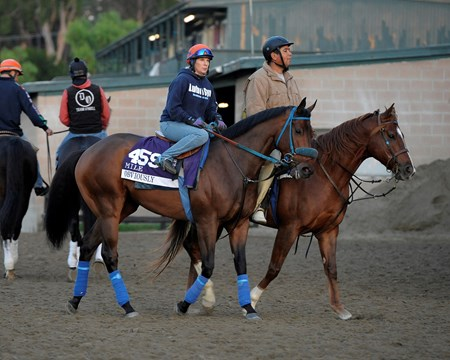 Caption:  Obviously