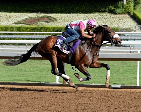 Caption:  Wonder Gal