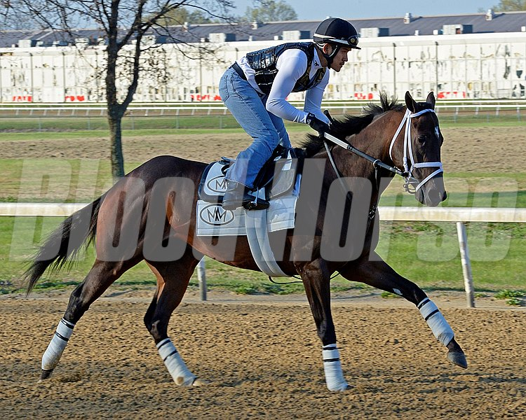Caption: Vicar's In Trouble with Joel Berrientos out on the training track.