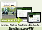 National Stakes Conditions Tool