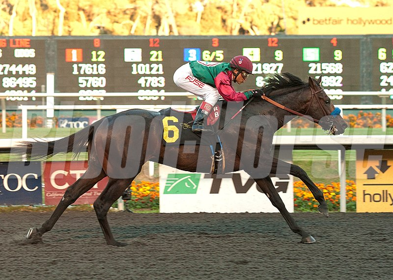 Tamarando and Rafael Bejarano win the $100,000 Real Quiet Stakes at Betfair Hollywood Park.