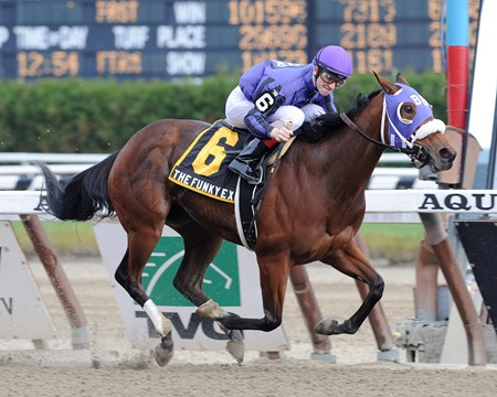 The Funky Express wins the New York Stallion Series S. 11/13/2011