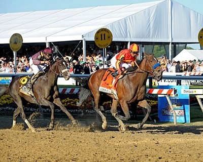 Lookin At Lucky wins the 2010 Preakness Stakes (gr. I).