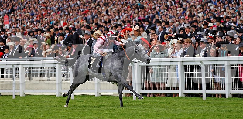 Leathel Force, ridden by Adam Kirby, wins the Diamond Jubilee Stakes.