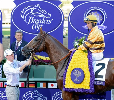 Caption: Wise Dan with John Velazquez wins the Mile.