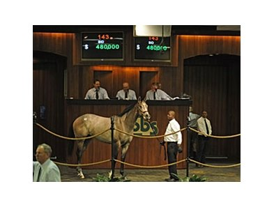 Topping the opening session at $480,000 was Hip No. 143, a Flatter colt out of the Well Decorated mare Well.