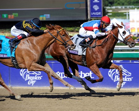 Groupie Doll with Rajiv Maragh overpower Judy the Beauty to win the 2013 Grade I Breeders' Cup Filly and Mare Sprint at Santa Anita Park.