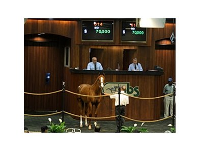 Hip 614, a colt by Midshipman, topped the final session of the sale, bringing $70,000.