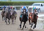 Materiality in the Florida Derby.