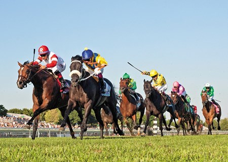Ken & Sarah Ramsey's Real Solution (far left red cap) winning the 2013 Arlington Million.