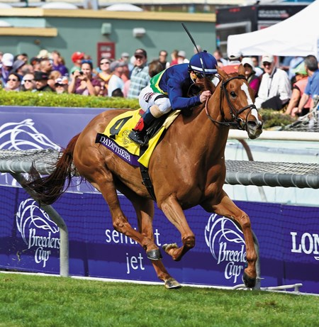 Dayatthespa with jockey Javier Castellano wins  the Breeders' Cup Filly & Mare Turf Saturday evening Nov. 1, 2014 at Santa Anita Race Track in Arcadia, California      Photo by: Skip Dickstein