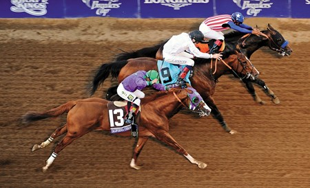 Bayern mugged Shared Belief shortly after the start of the $5 million Longines Breeders' Cup Classic (gr. I) and got away with it, outlasting Toast of New York and California Chrome in a thrilling stretch duel Nov. 1 at Santa Anita Park.