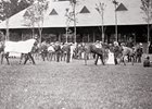 Racing Hall of Fame Unveils Saratoga Exhibit