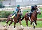 Mr. Z (outside) breezed five furlongs in 1:01 at Churchill Downs April 22.
