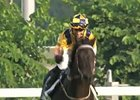 Hong Kong Cup Day: Jockey Tommy Berry