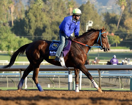 Caption:  Belle Gallantey