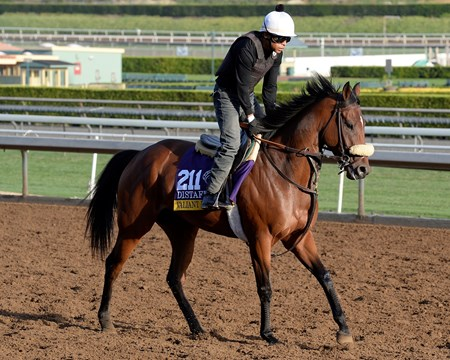Caption:  Valiant Emilia