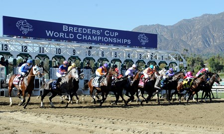 The start of the Breeders' Cup Juvenile at Santa Anita Park.