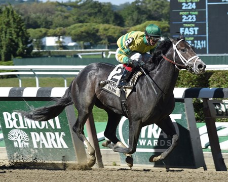 Eased just off the pace in the turn by red-hot jockey John Velazquez, favored Blofeld then rallied along the rail to win the $200,000 Grade II Futurity Stakes by three-quarters of a length at Belmont Park.